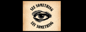 See Something, Say Something (SeeSay2020) converts voter reported cases of intimidation into real-time, actionable maps and alerts