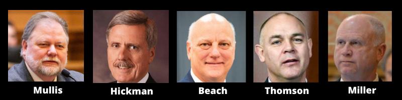 Georgia senators propose more voter senators.