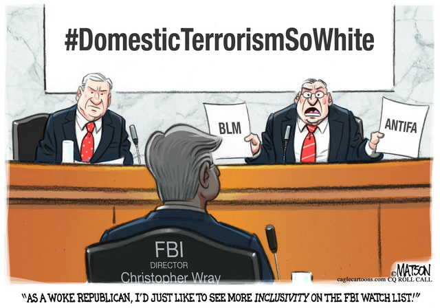 FBI, FEDERAL BUREAU INVESTIGATIONS, SENATE COMMITTEE HEARING, DIRECTOR, WRAY, DOMESTIC TERRORISM, WATCH LIST, WOKE, REPUBLICAN