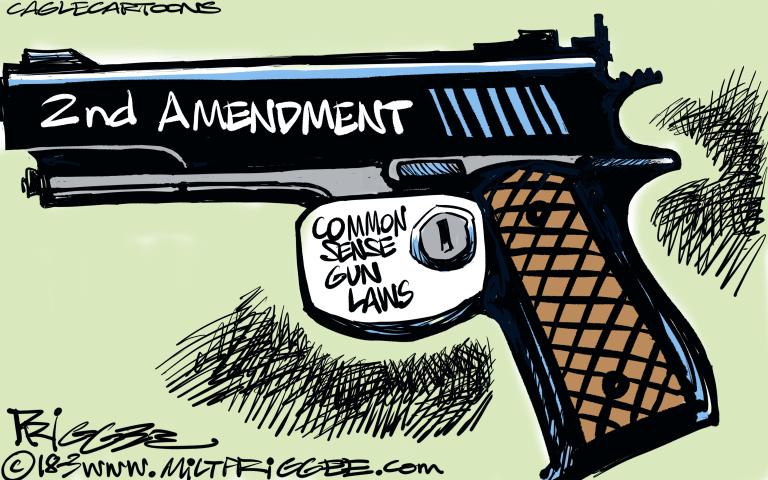 2ND AMENDMENT, GUN RIGHTS, GUN CONTROL LAWS, MASS SHOOTINGS, NRA, STUDENT PROTESTS, UNITED STATES, AMERICA